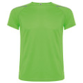 Camiseta sepang Roly Color 225