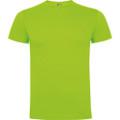 camiseta roly dogo premium color 114