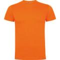 camiseta roly dogo premium color 31